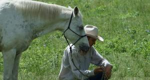 Equine-Connection-Ben-Skerrett-slider