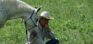 Skerrett-Equine