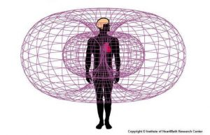 Heart-Boundary-energy-field